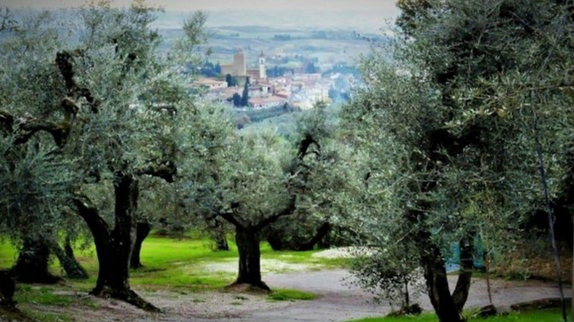 Viaje a la Italia de Leonardo da Vinci: naturaleza, arte, cultura y gastronomía