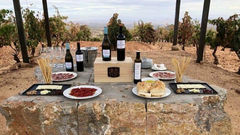 De vinos por la Ruta de la Rioja Oriental