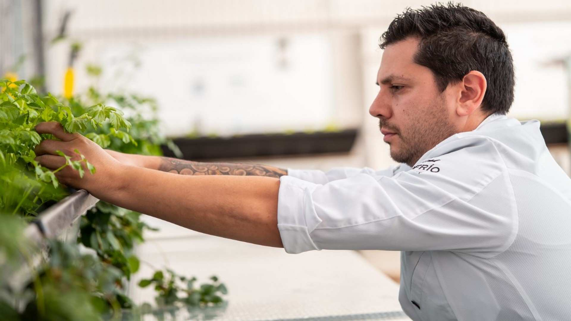 """Diego Gallegos: """"lo positivo de esta crisis es que va a volver la artesanía a la cocina"""""""