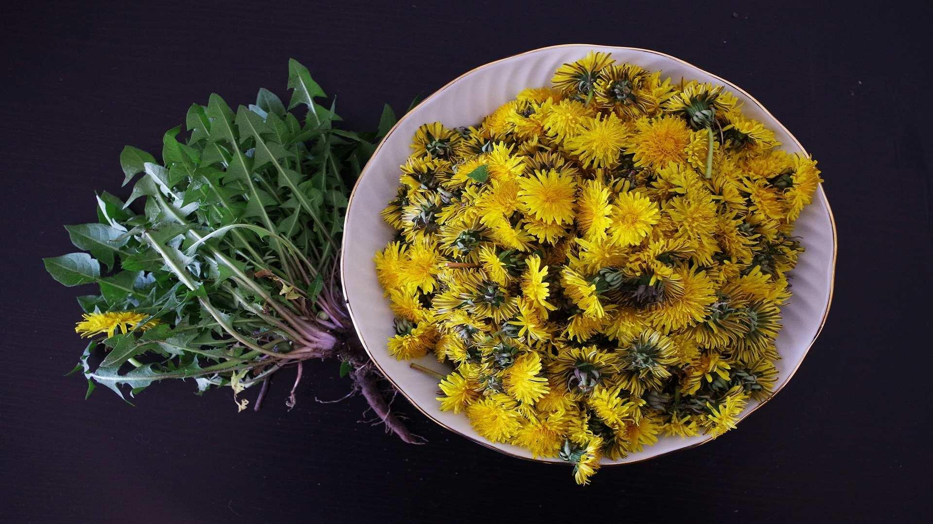 Flores que se comen: color, sabor y estética