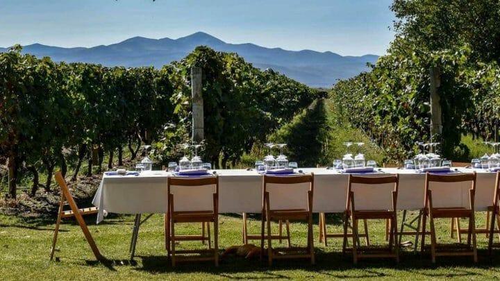 Las bodegas de La Rioja... son para el verano