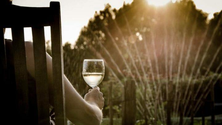 Viaje por España a través de sus vinos