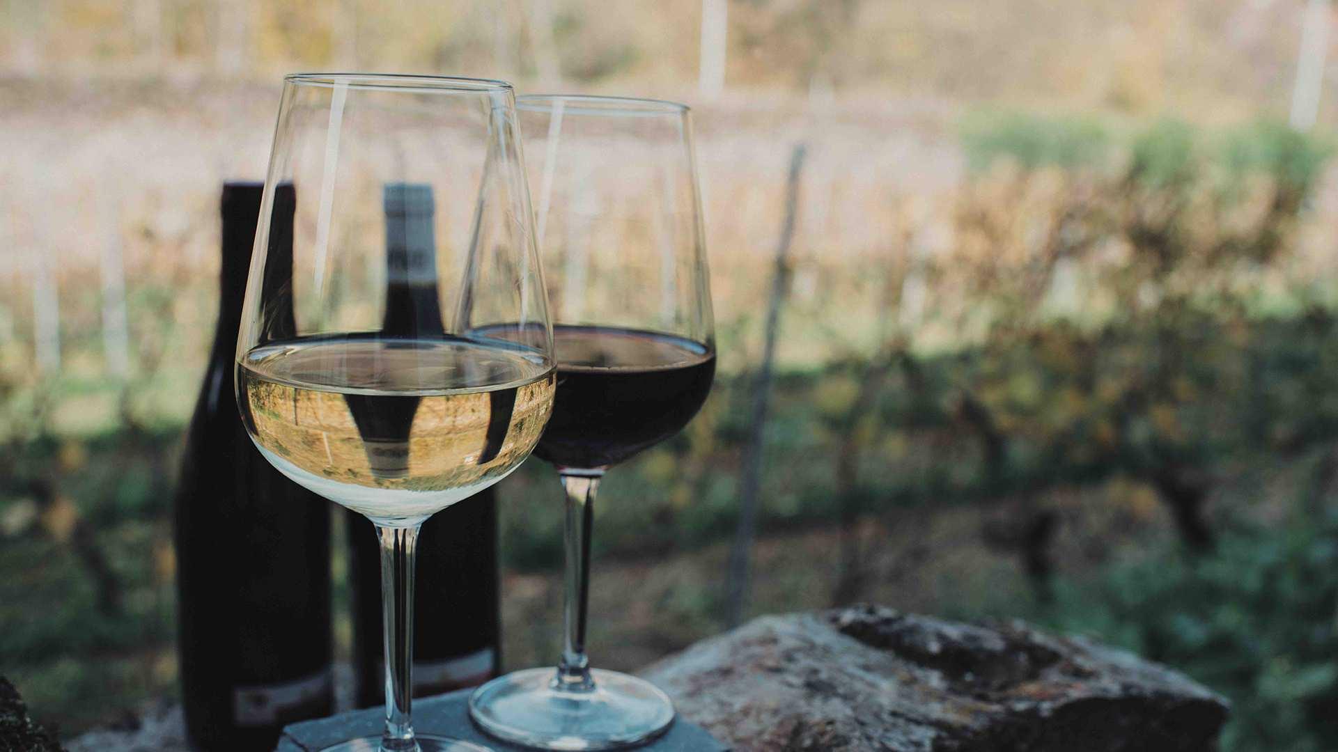 Bodegas de Asturias y la cocina de las guisanderas, la escapada perfecta para este otoño