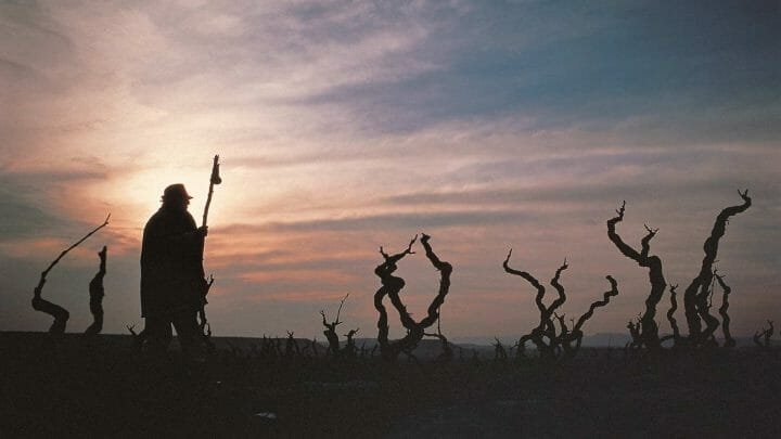 Camino de Santiago en La Rioja, paradas y fondas que te gustará conocer