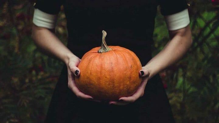 La Calabaza más allá de Halloween: propiedades y beneficios de la reina naranja