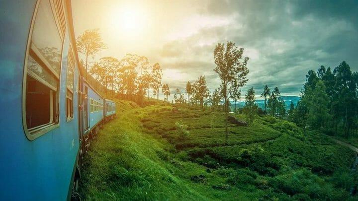 Sri Lanka, la versión terrestre del paraíso