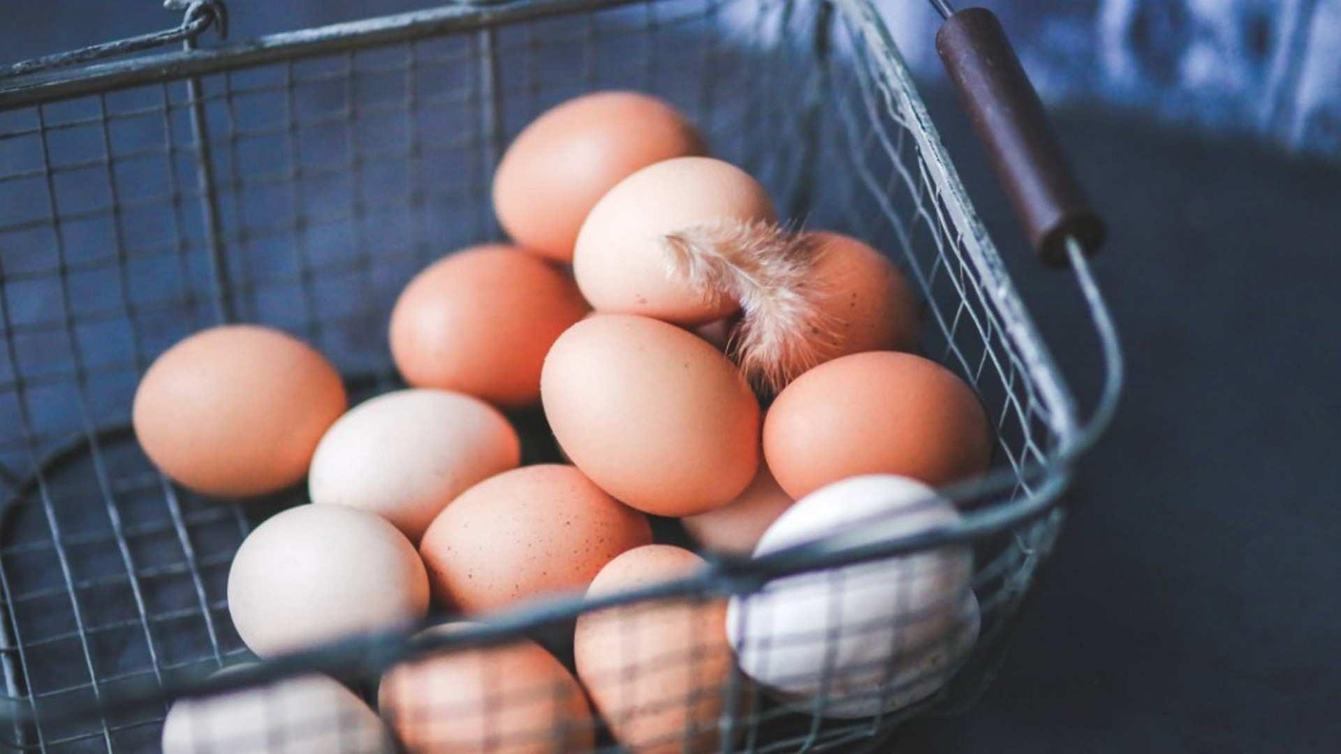 Huevos camperos: 5 características nutricionales que no conocías de este súper alimento