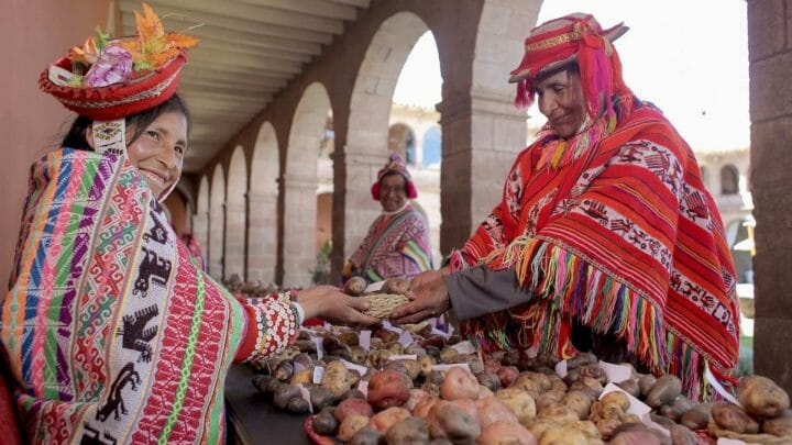 Perú, el origen de la papa