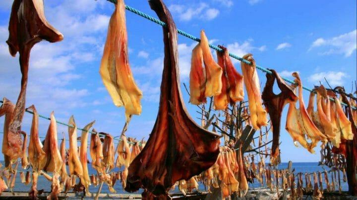 Formentera: gastronomía en el Paraíso