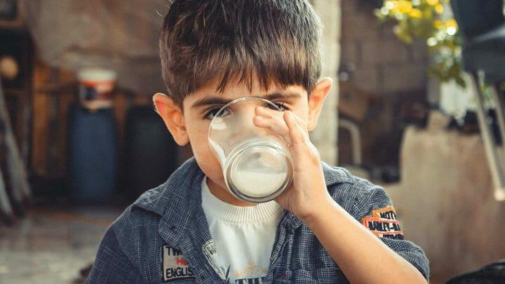 Las leches infantiles enriquecidas, gran aporte de DHA