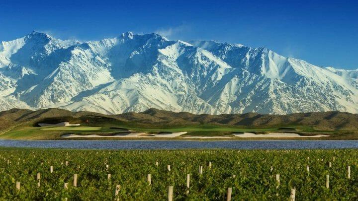 Breve historia de los vinos argentinos