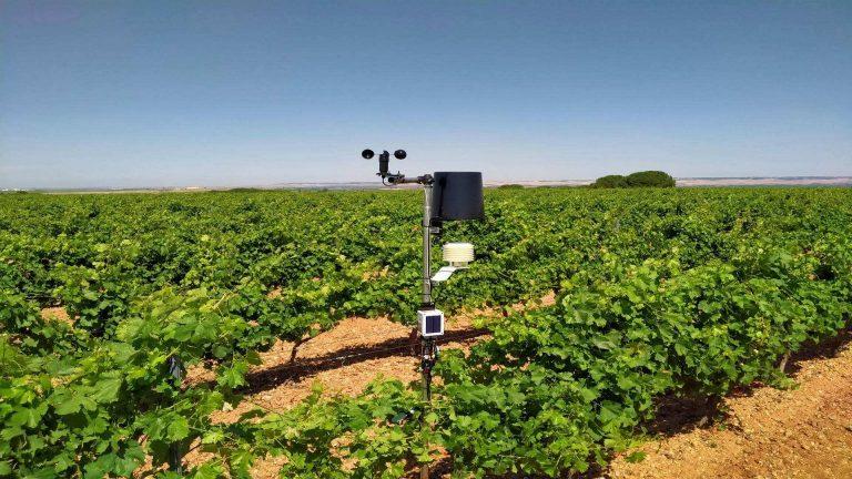 El nuevo sistema de estaciones agroclimáticas de D.O Rueda