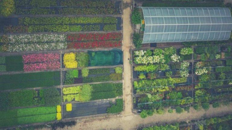 La sostenibilidad en el sector gastronómico: presente y el futuro del sector