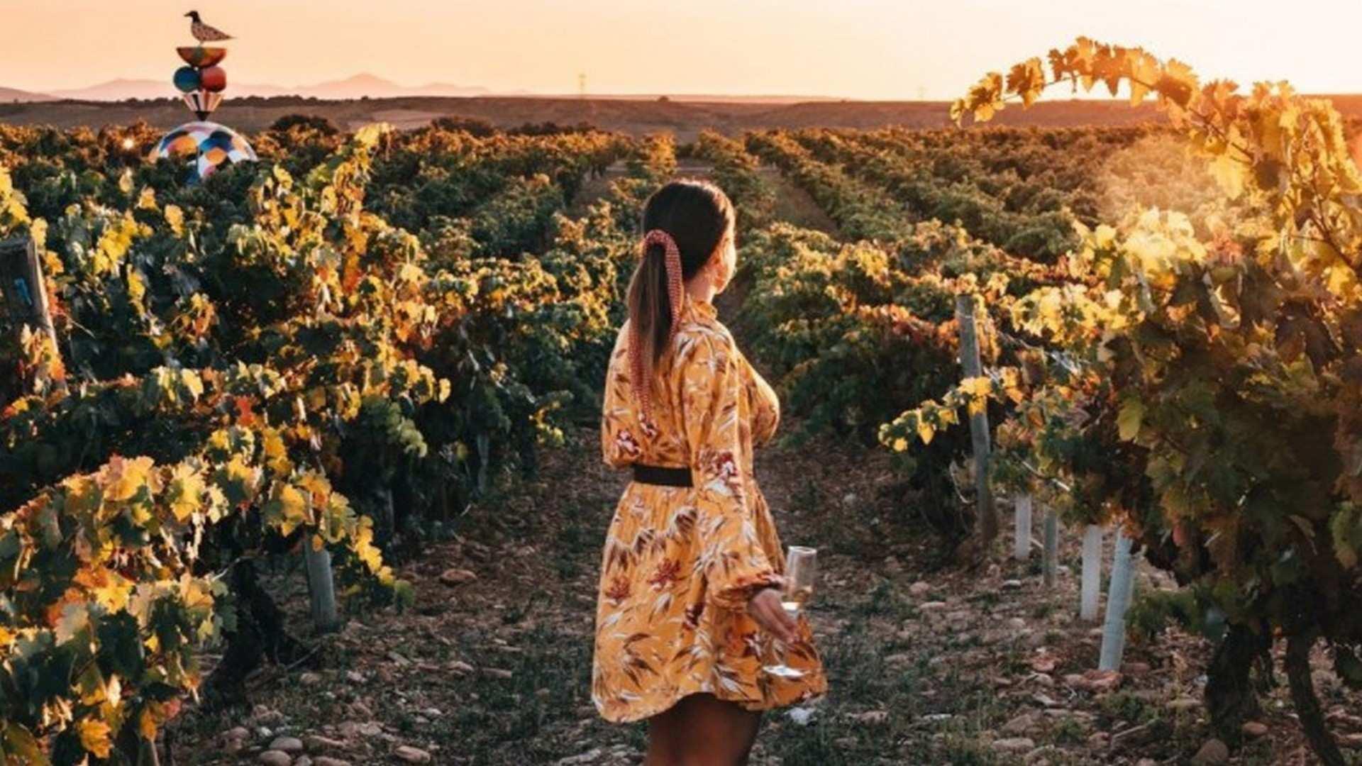Ruta por las bodegas de La Rioja que tienes que visitar este verano